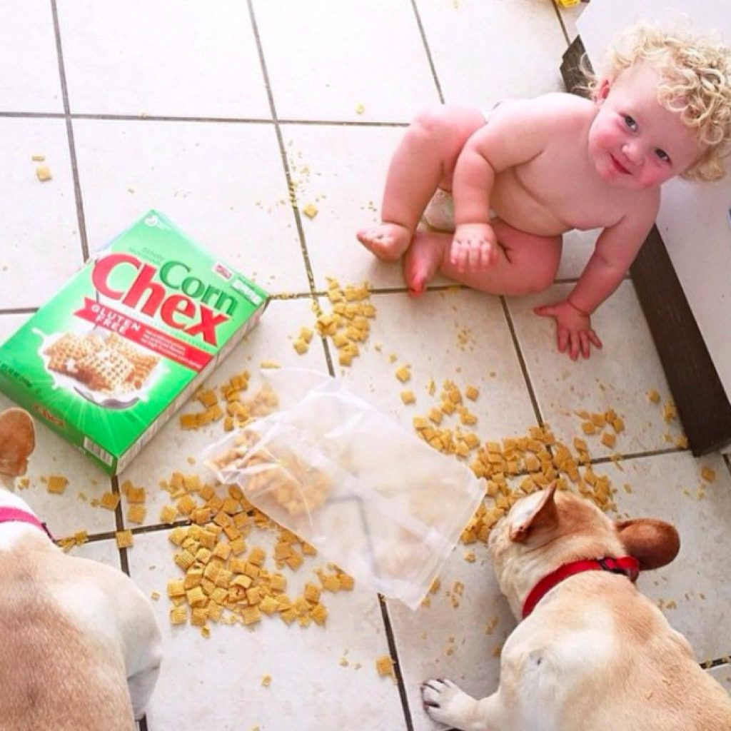 Baby and puppy funny kid photos