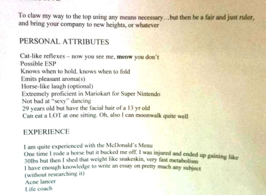 Extremely unprofessional resume
