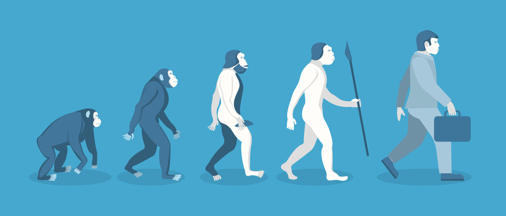 Evolution of Man From Apes School Lessons