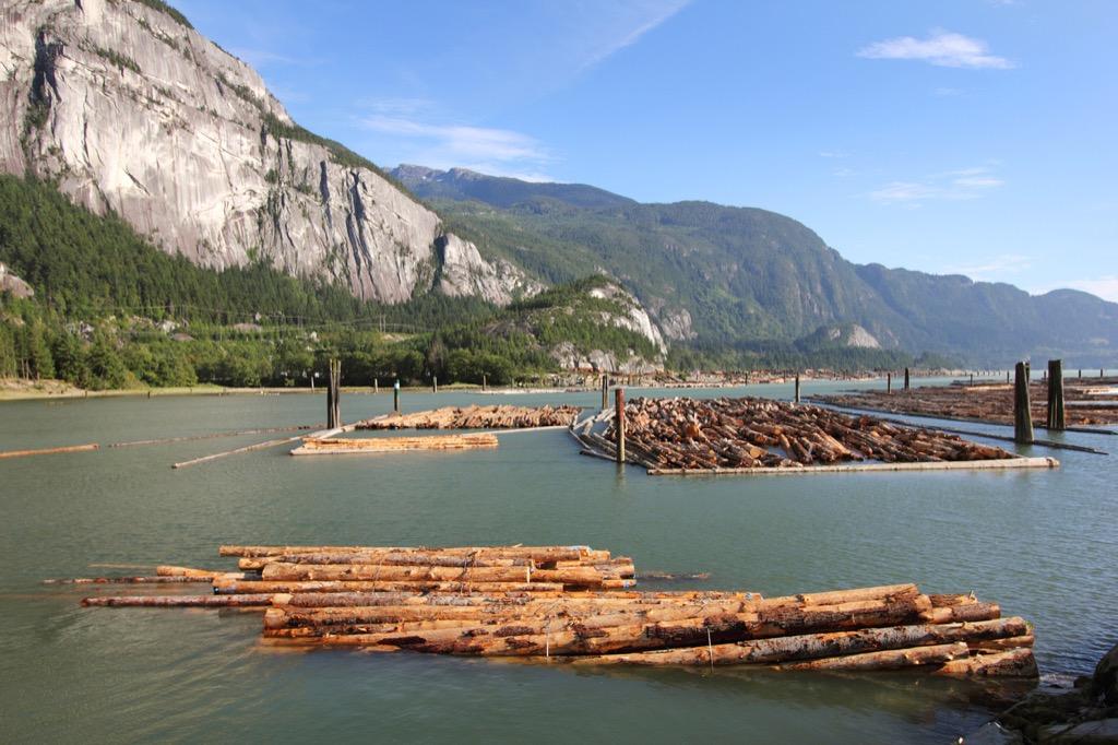 Log driver obsolete jobs