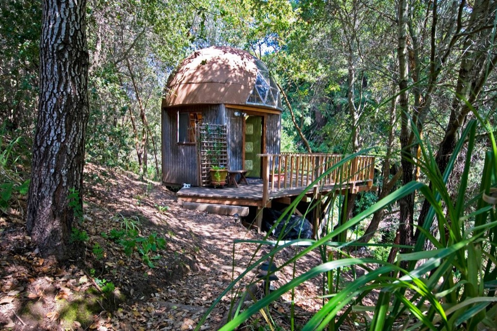 Mushroom Home Aptos, California airbnb