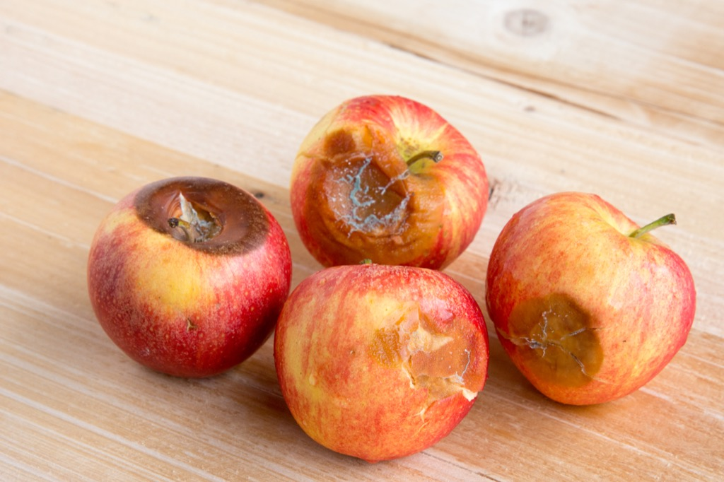 Rotten Apples Grocery Shopping Mistakes