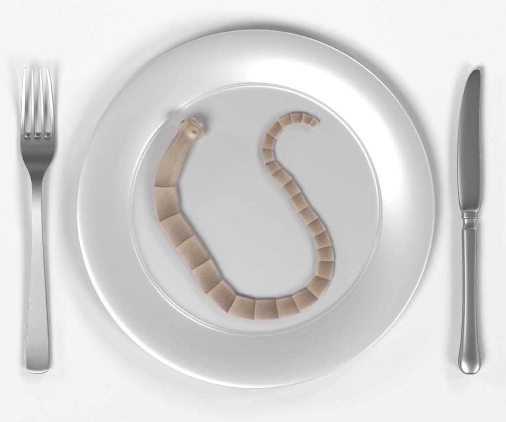 Tapeworm Diet Dangerous Diet Fads - deadliest animals
