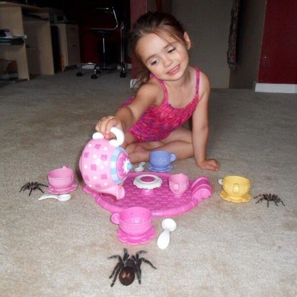 Spider party funny kid photos