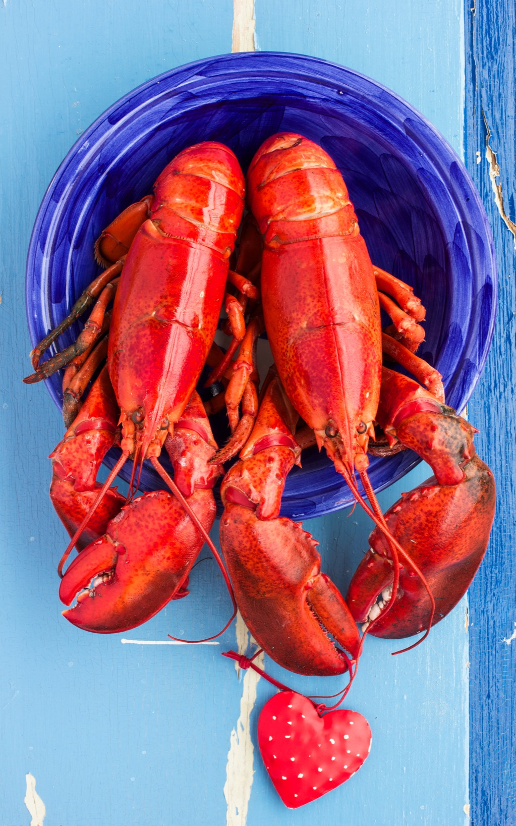 Two Lobsters Random Facts