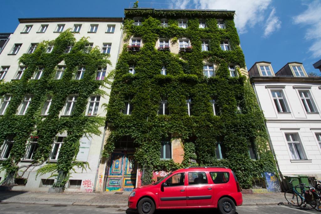 Vertical Garden 25 Years