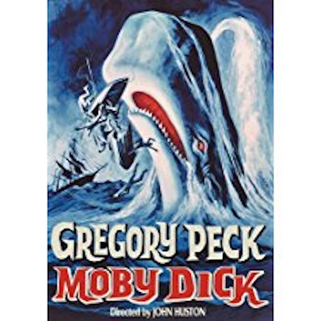 Moby Dick Amazing Facts