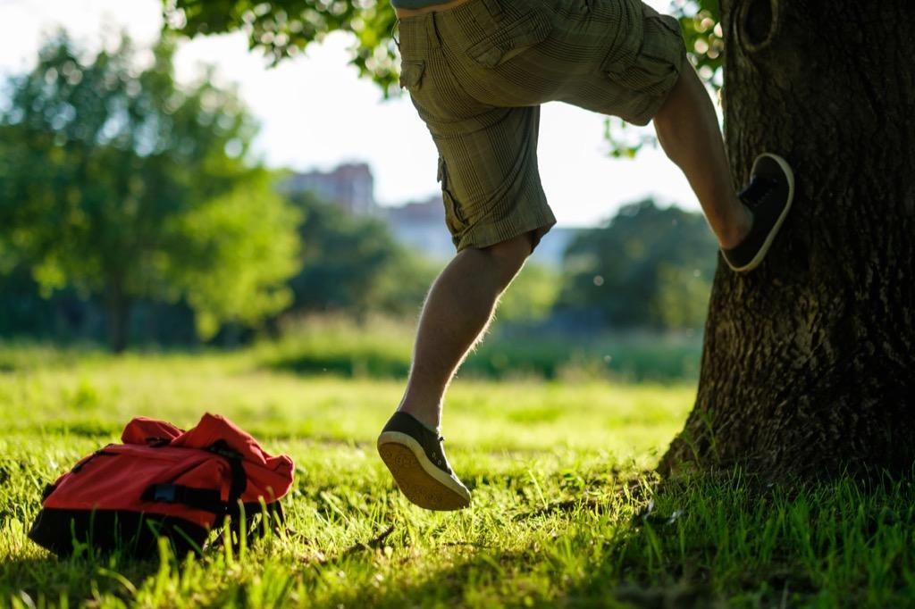 Tree Climbing weirdest college courses
