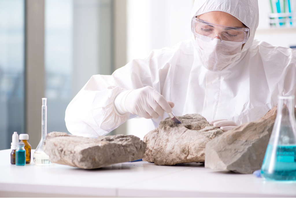 Geologist with Rock in Lab Planet Earth Facts