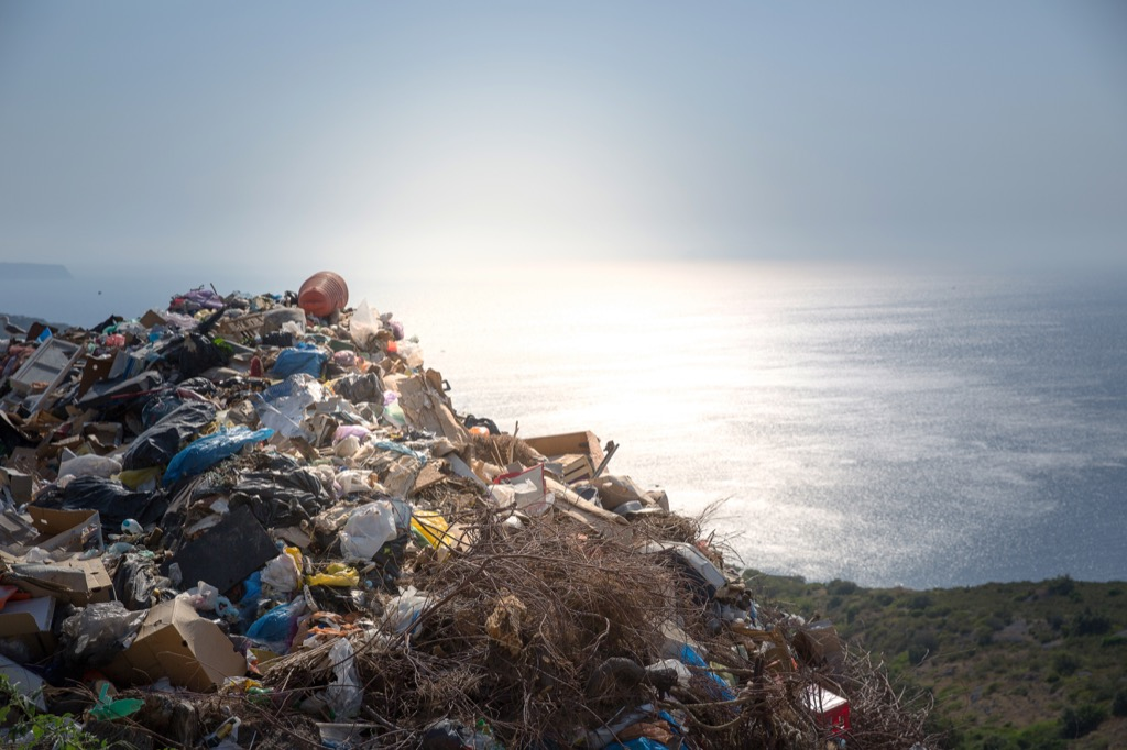 Great Pacific Garbage Patch Astonishing Facts