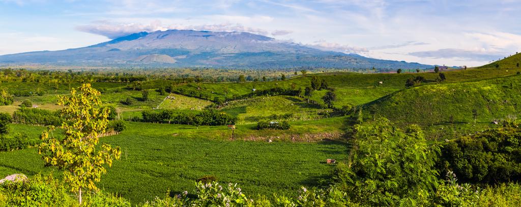 Mount Tambora Indonesia Planet Earth Facts