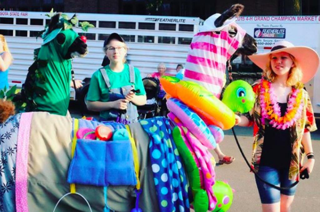 Minnesota state fair llama contest
