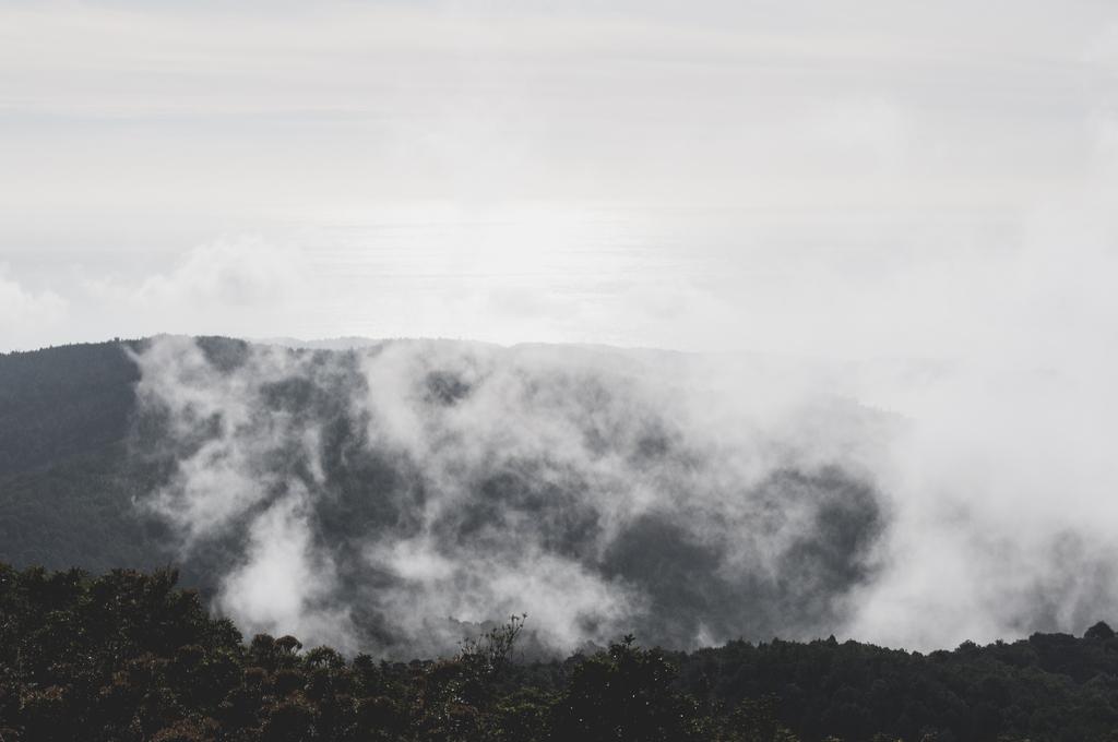 Valdivia Chile Planet Earth Facts