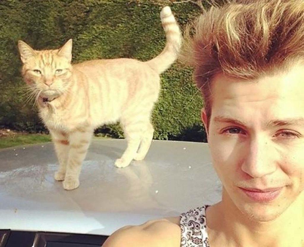 James McVey's cat
