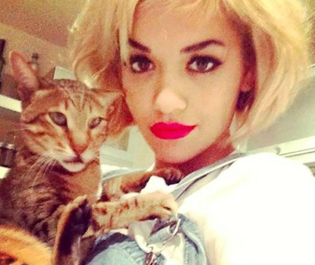 Rita Ora's cat