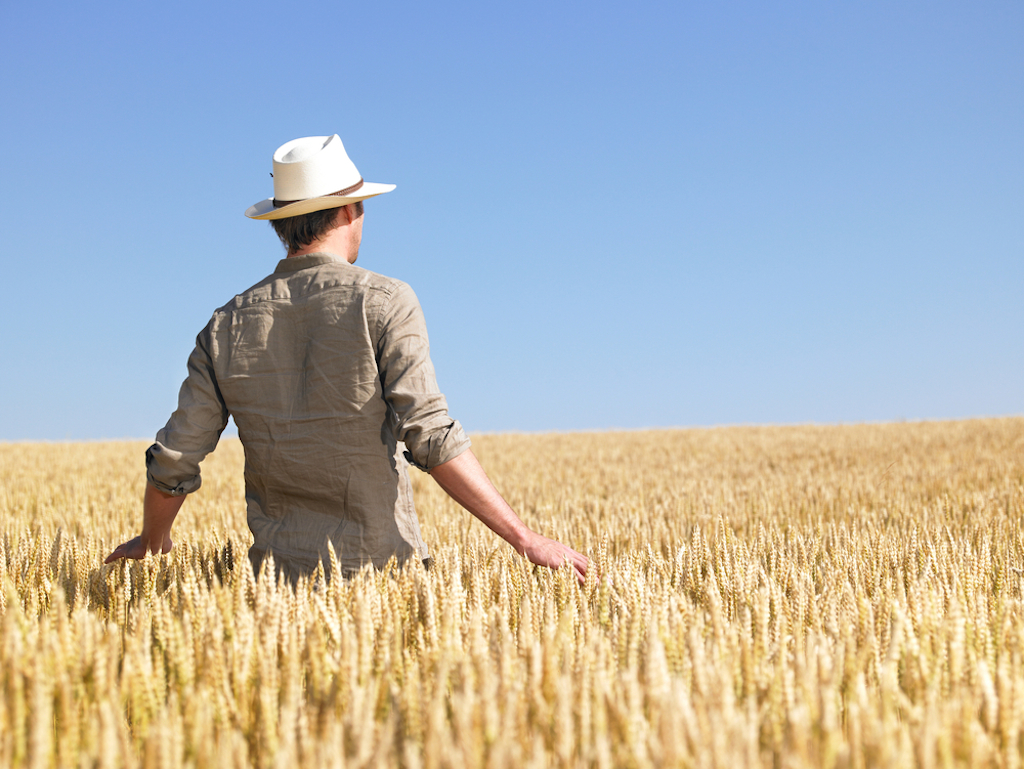 man in field not looking at camera