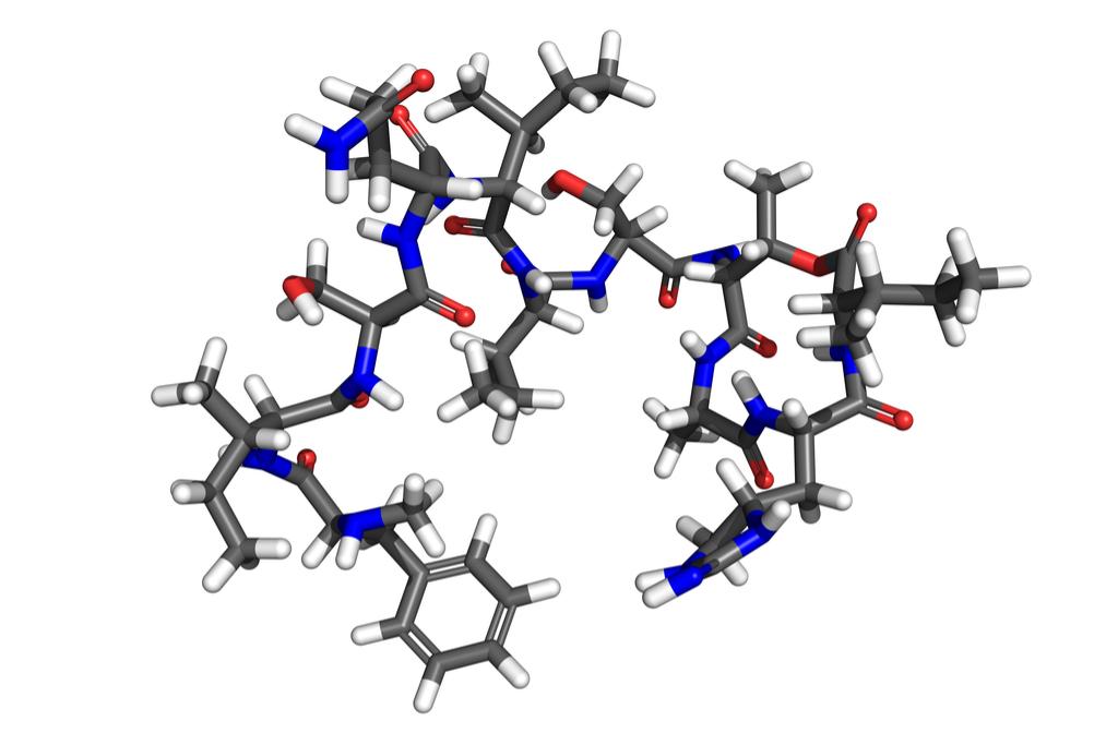 Teixobactin Antibiotic Scientific Discoveries