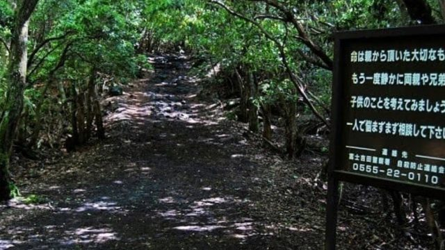 Aokigahara Japan suicide forest