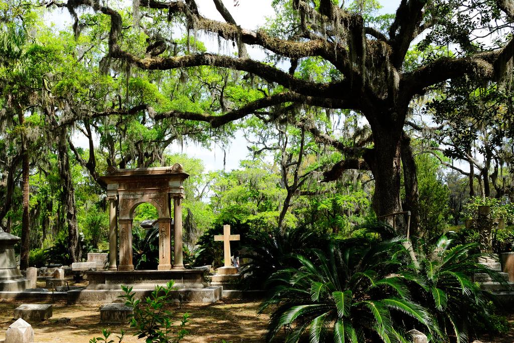 Bonaventure Cemetery Savannah Magical Destinations