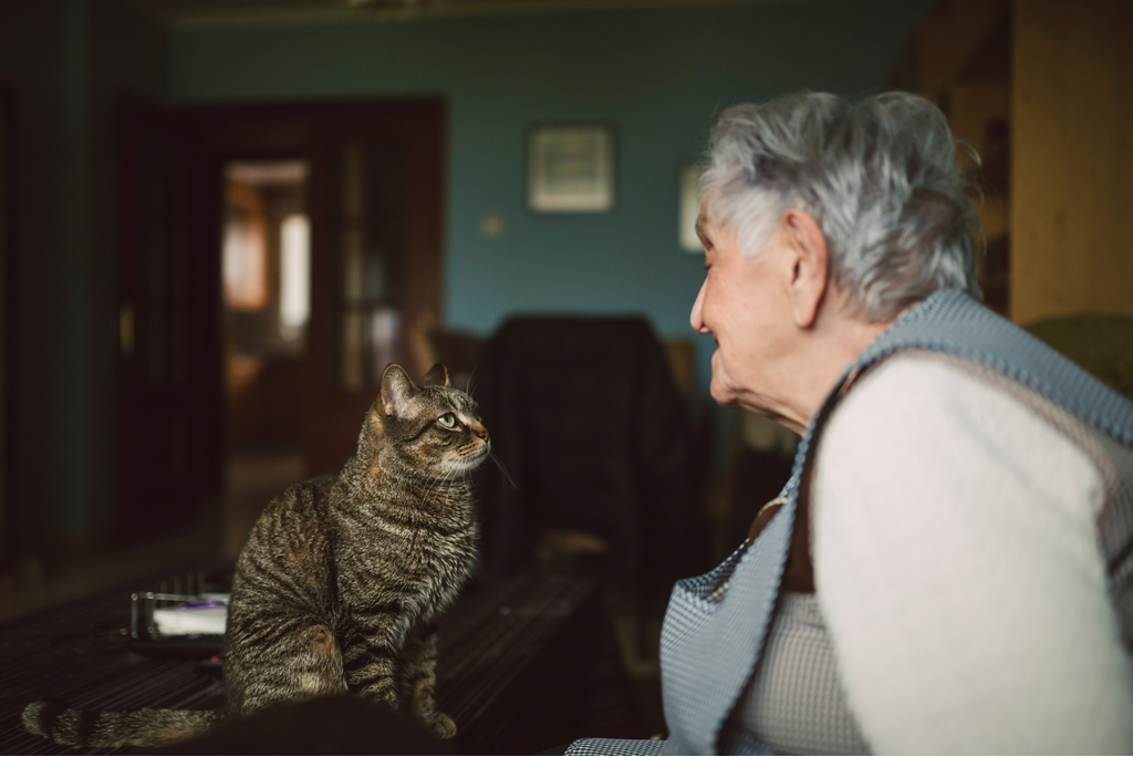 Cat and Owner Eye Contact