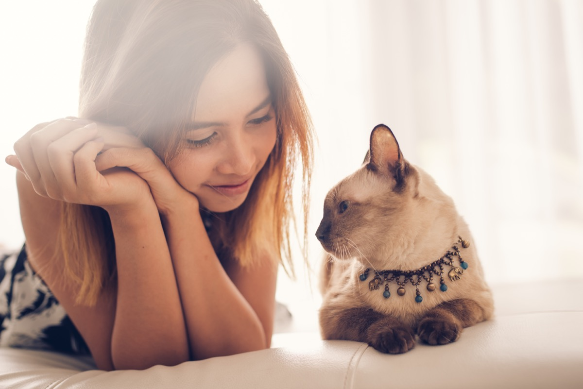 cat lovingly laying beside its owner on the bed