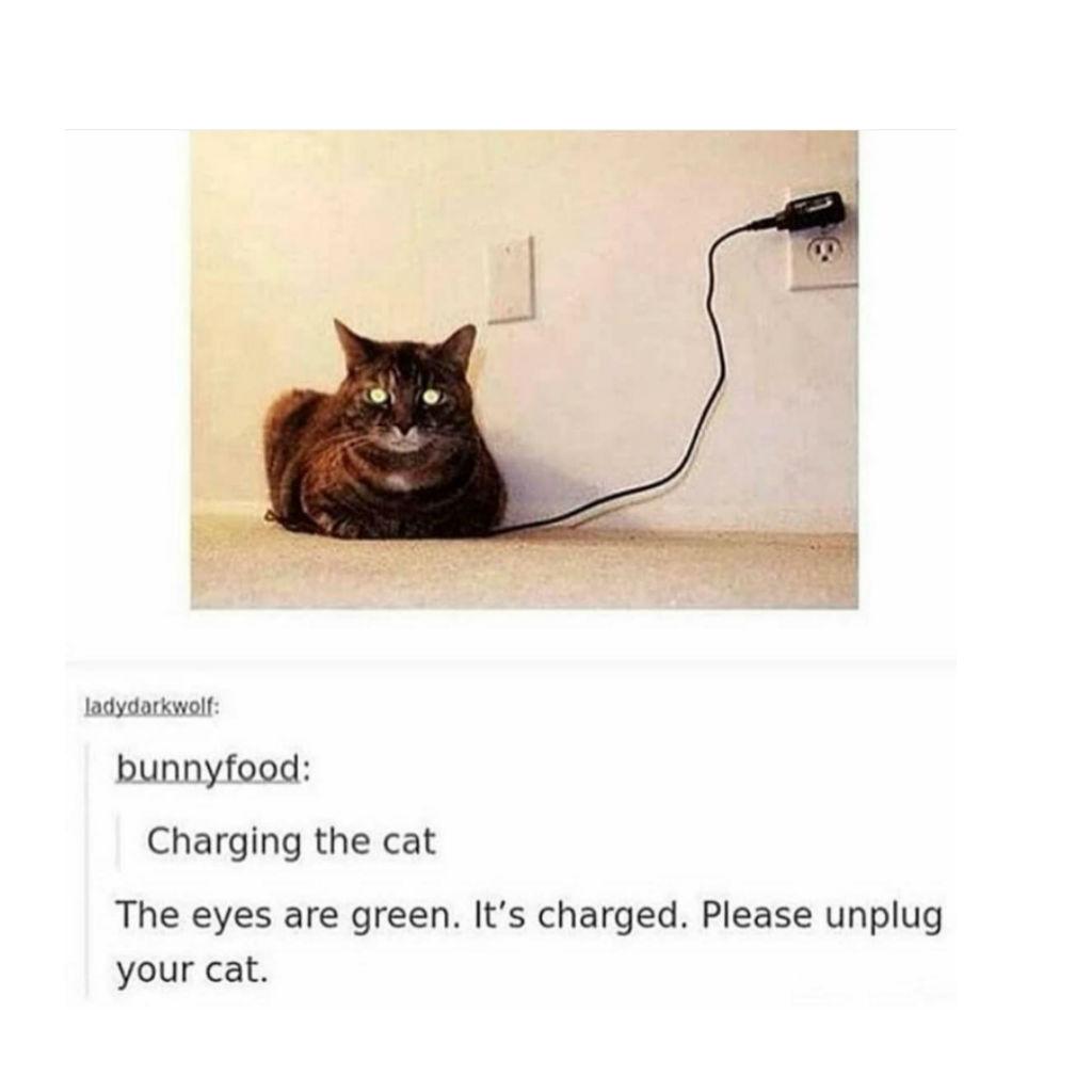 Charging cat memes
