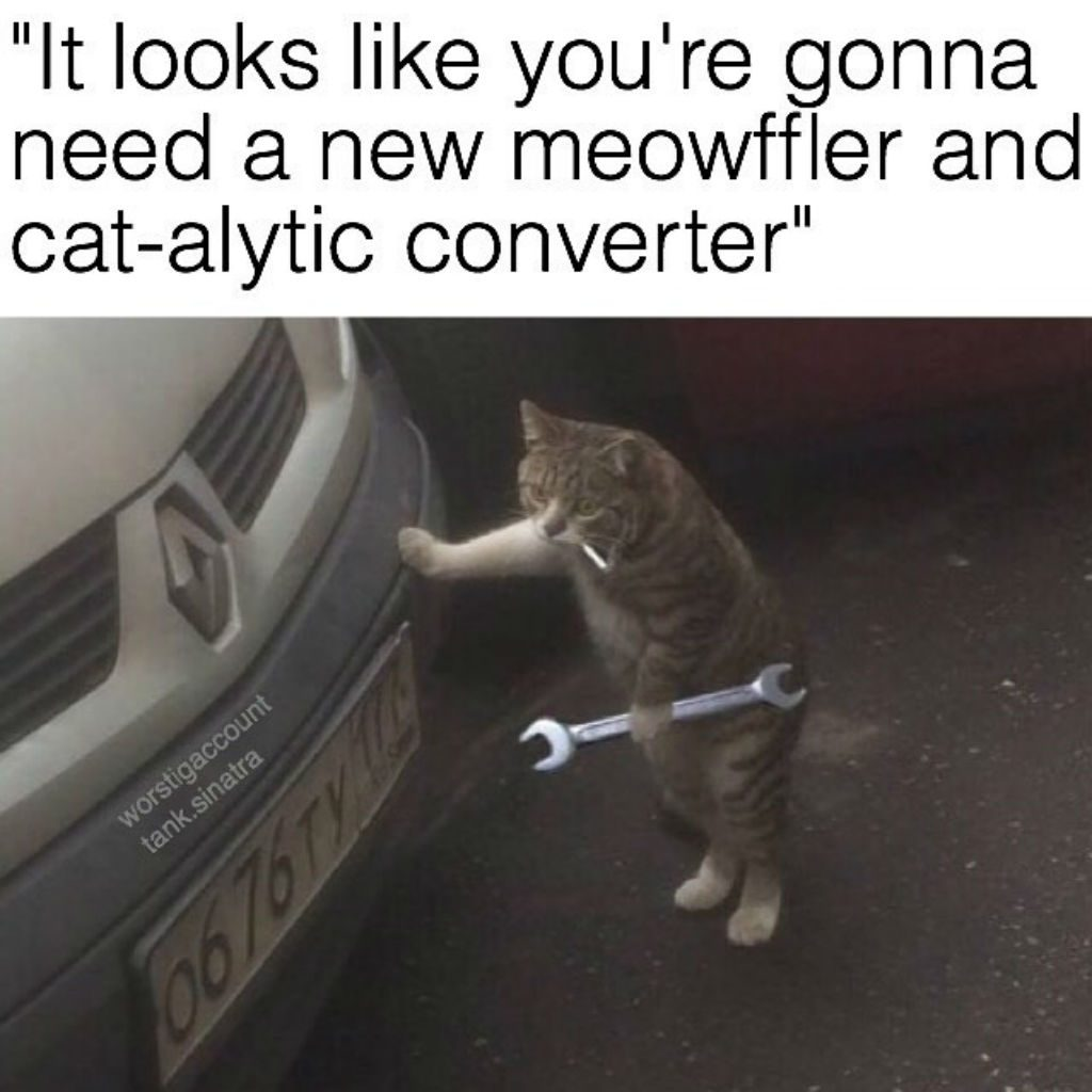 Mechanic cat memes