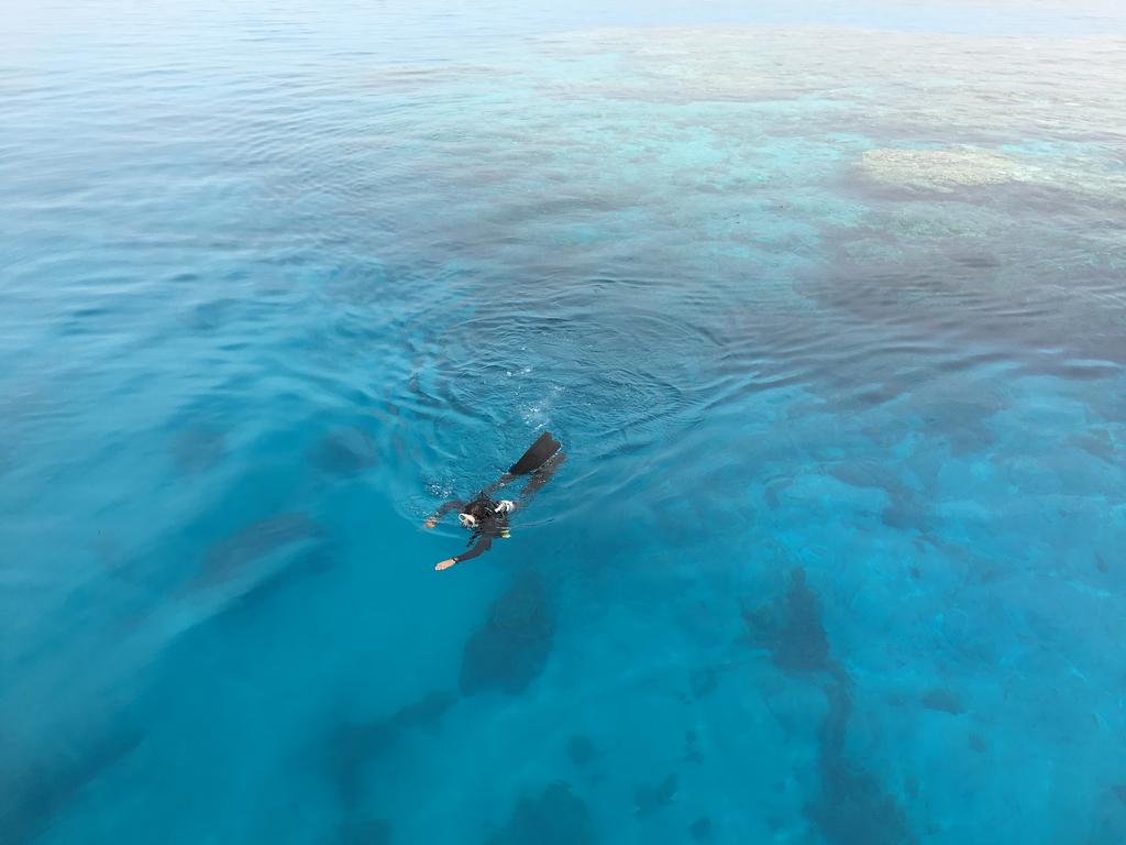 Deep Sea Diver Ocean