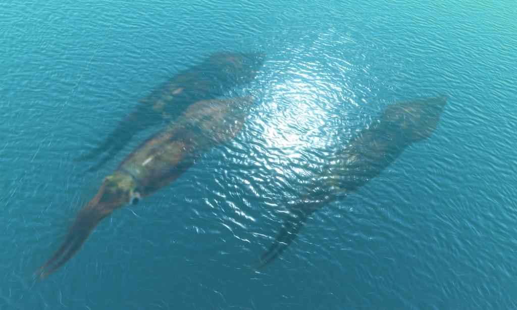 giant squid terrifying ocean facts