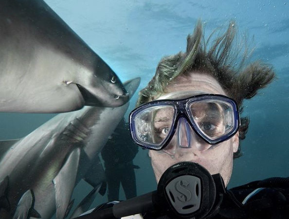 Man with Sharks Selfies