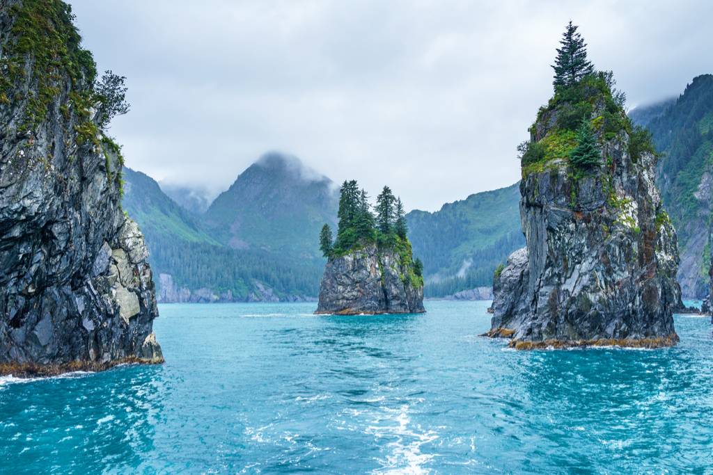 Porcupine Bay Kenai Fjords National Park Magical Destinations