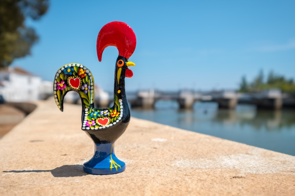 Portugal rooster