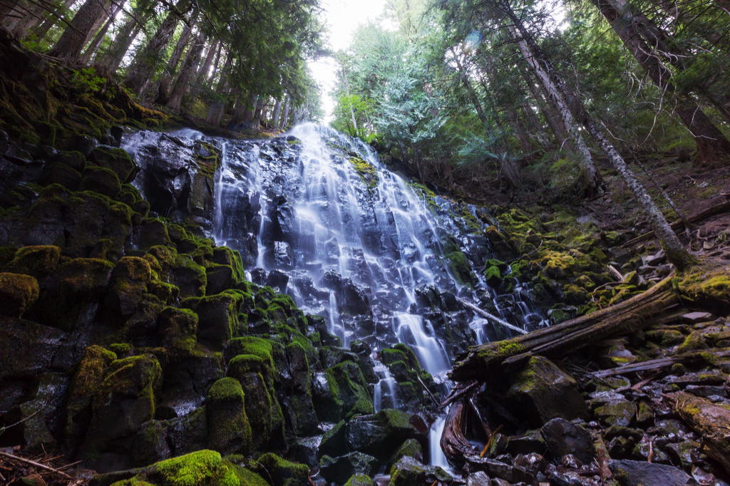 Ramona Falls Oregon Waterfalls
