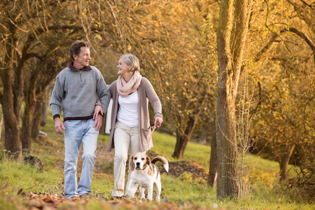 elderly couple takes an autumn stroll with their dog.