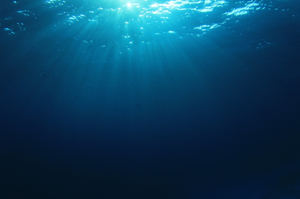 deep water is very scary