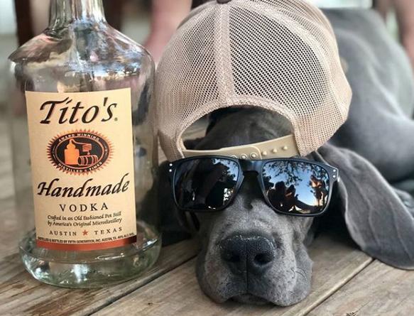 Tito's Handmade Vodka pet-friendly companies