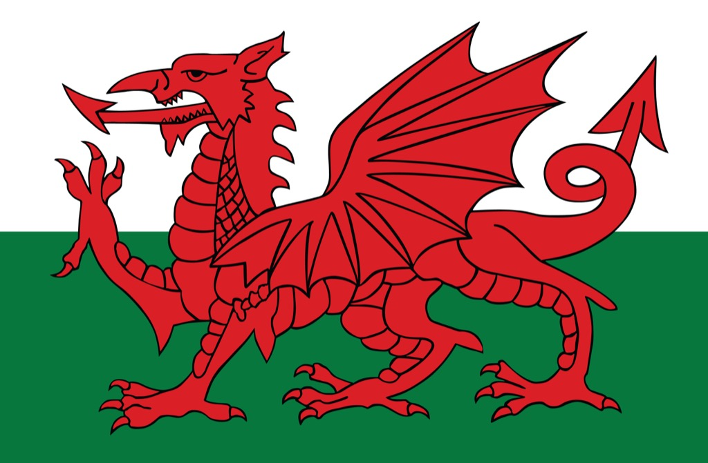 Wales Welsh dragon flag