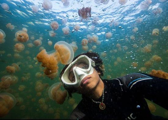 Woman Selfie with Jellyfish Selfies