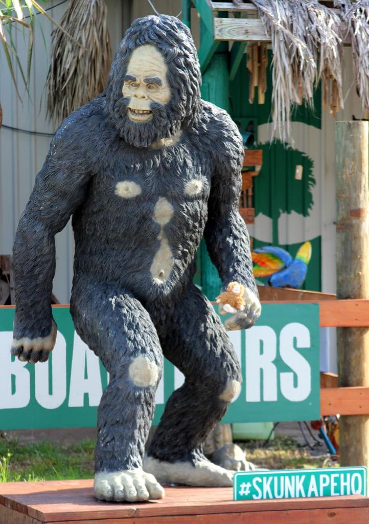 florida skunk ape weirdest urban legends every state