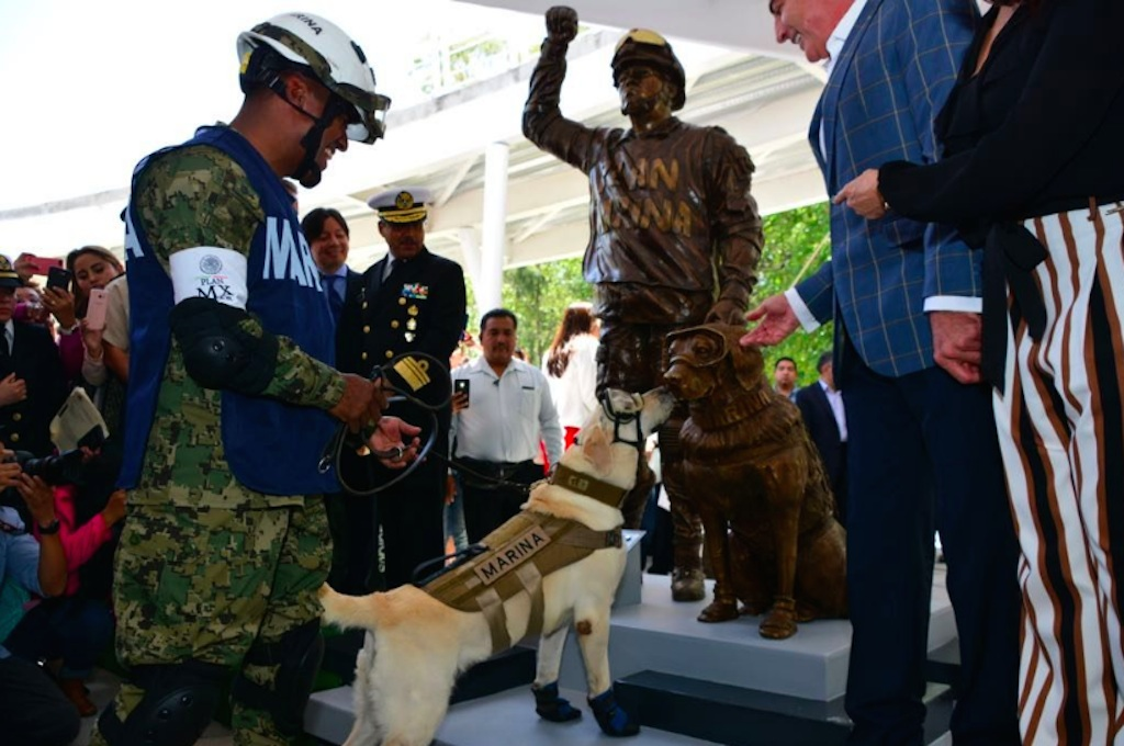 frida the rescue dog gets a statue in Mexico for her part in saving the lives of 12 people in last year's earthquake {best of 2018}