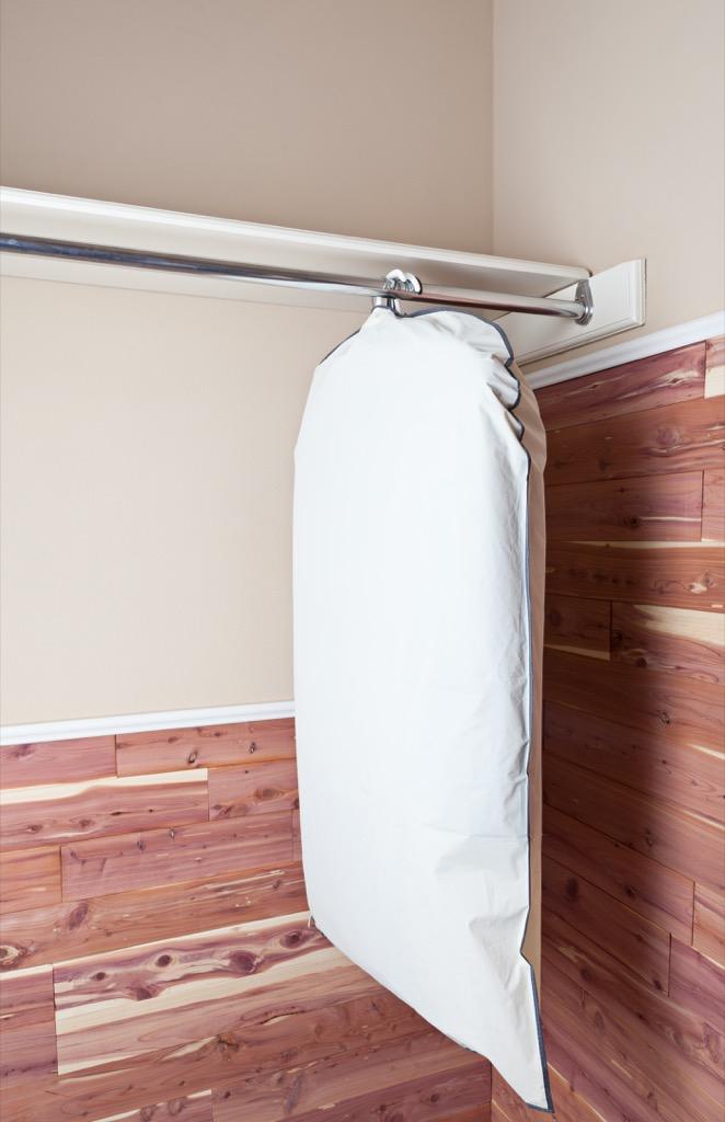Garment bag in a closet.