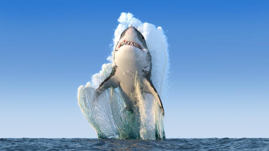 great white shark jumping out of ocean - deadliest animals