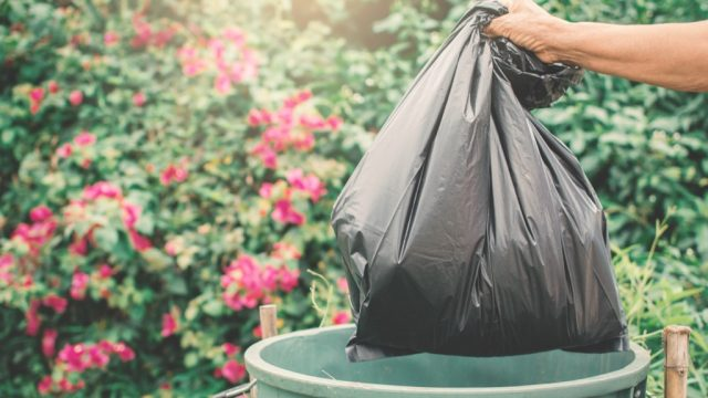 throwing out trash, new uses for cleaning products