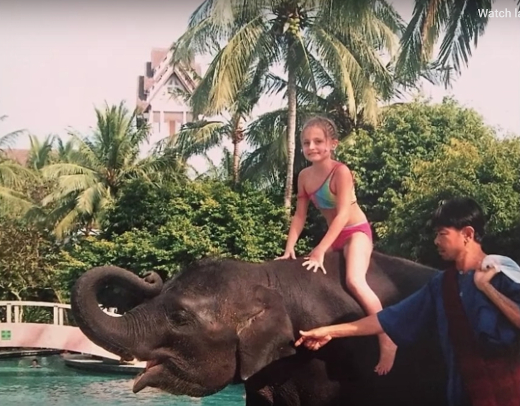 Ning Nong the Elephant Animals Who Are Real-Life Heroes