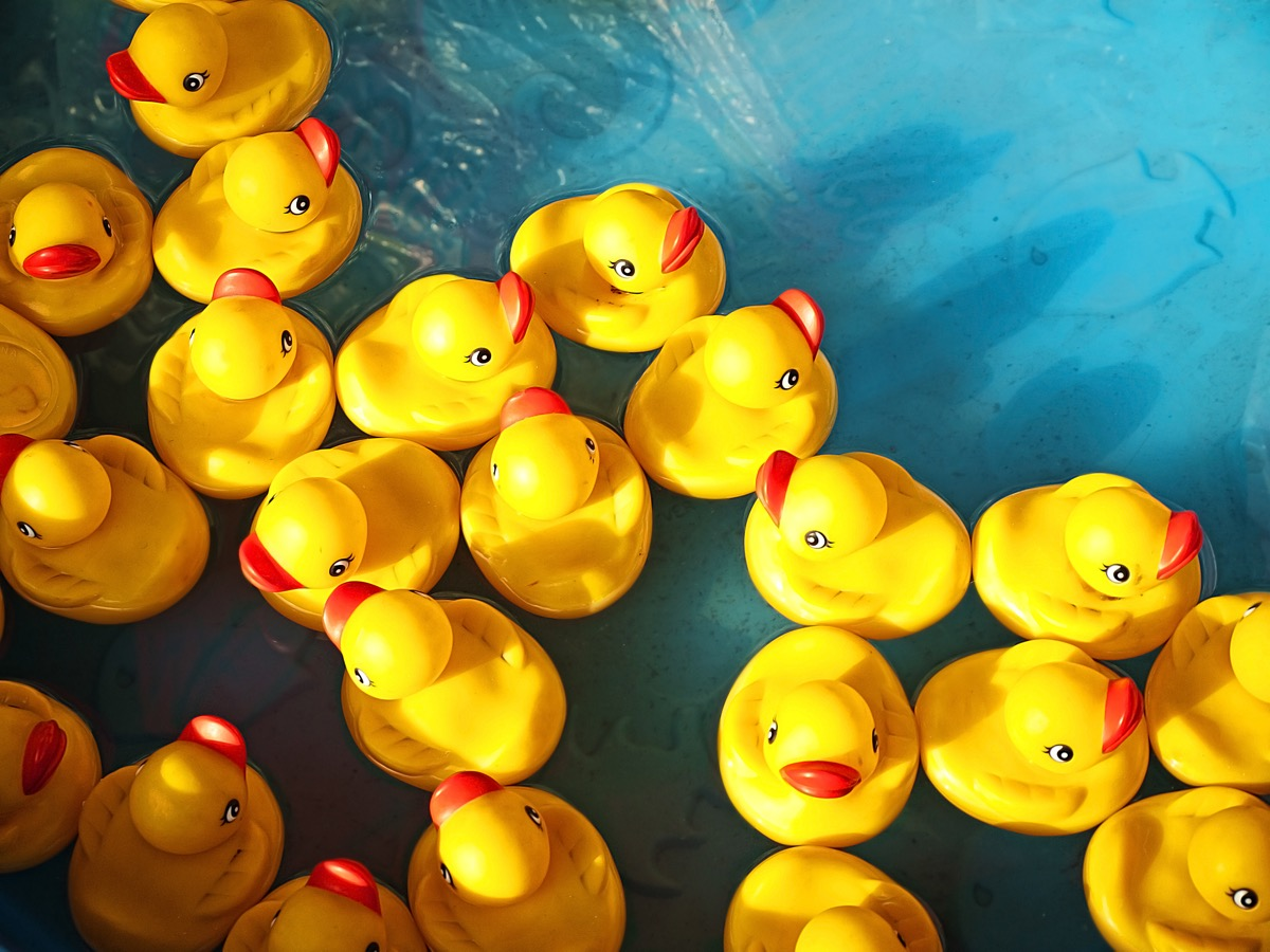rubber ducks floating in water things you should clean every day