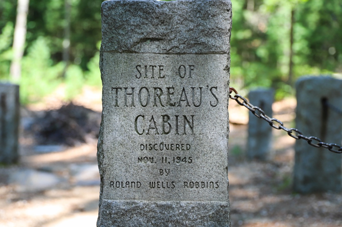 site of throeaus cabin marker thoreau