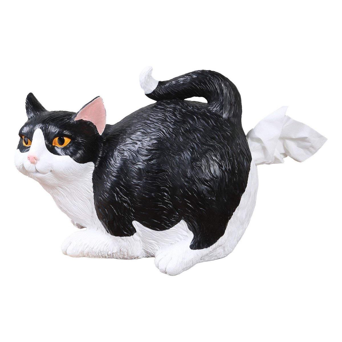 cat butt tissue