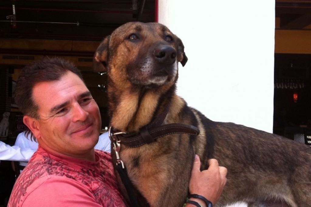 Cairo dog