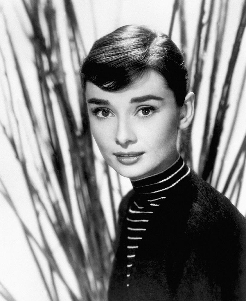 Audrey Hepburn Portrait Female Icons