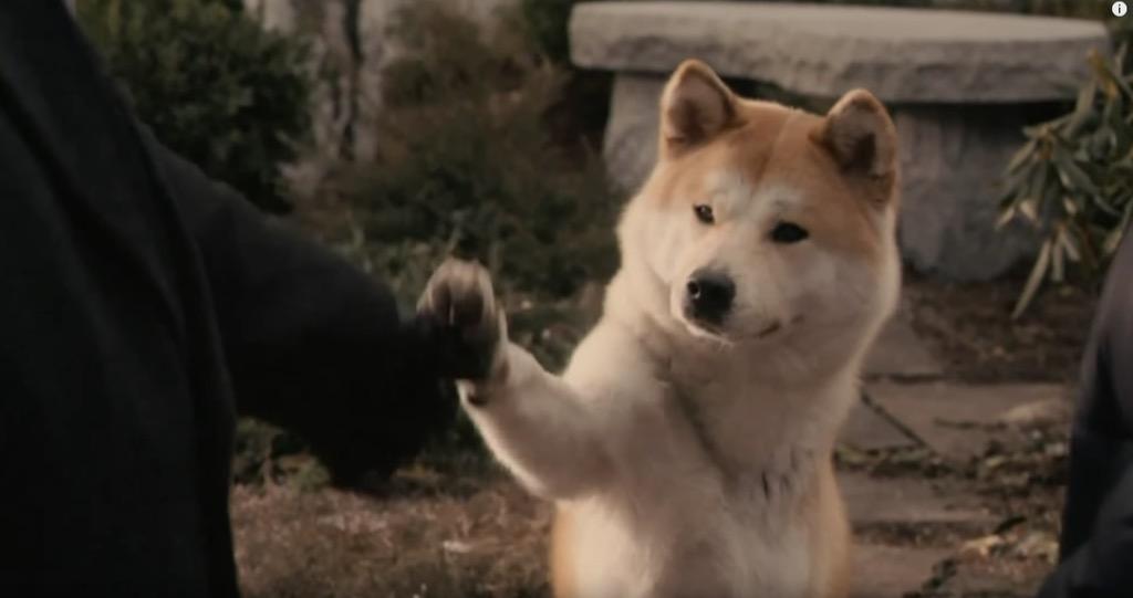 Hatchi: A Dog's Tale